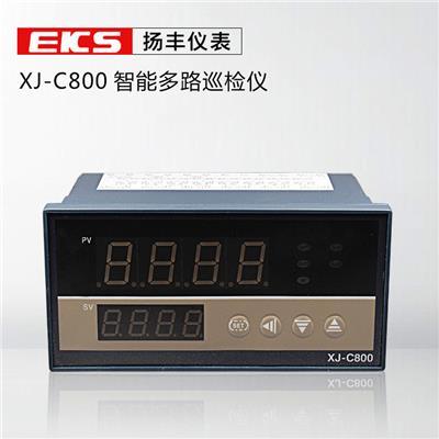 扬丰仪表 温度智能多路巡回检测仪LAN-C800 巡检仪 6路 8路 XJ-C800