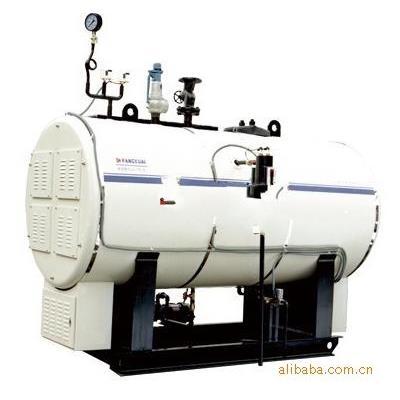 张家港市方快  电加热无污染蒸汽锅炉 WNS型