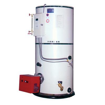 张家港市方 快   供应 小型燃油燃气热水锅炉厂家直销-    立式
