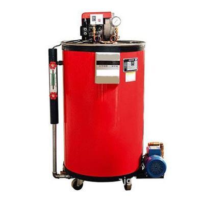 张家港方快 小型燃油燃气蒸汽发生器 配套用-  LSS