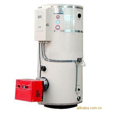 张家港方快 自动过热保护功能燃油燃气热水锅炉    立式