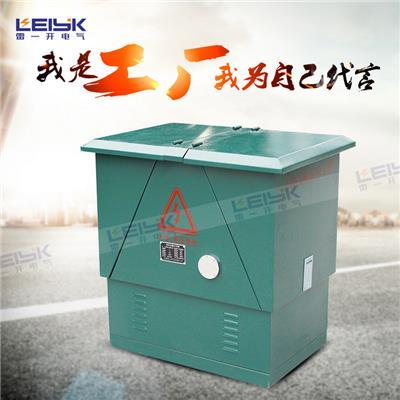 雷一  高压电缆分支箱分接箱 IP33