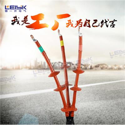 雷一 交联热缩电缆终端头 WSY-10/3.4
