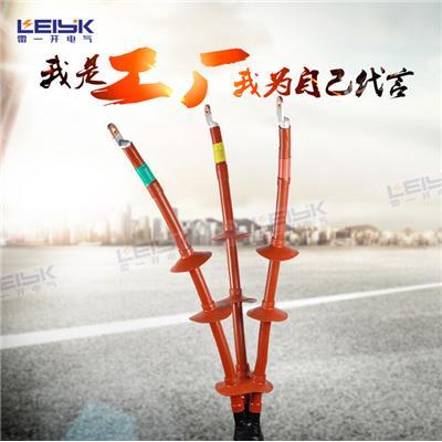 雷一 交联热缩电缆终端头 WSY-10/3.1