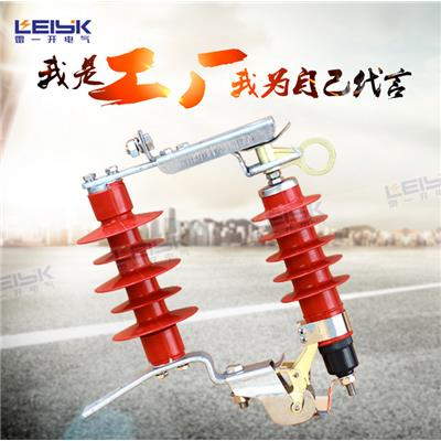 雷一 高压复合外套金属氧化物避雷器 HY5WS-17/50DL-TB