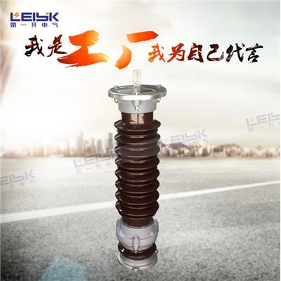 雷一 高压金属氧化锌避雷器 YH10W5-100/260