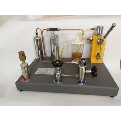 智拓  0~40Mpa 氧气表压力表两用校验器 LYL-400