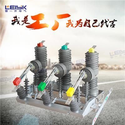 雷一  高压真空断路器 ZW32P-12G/630-12.5