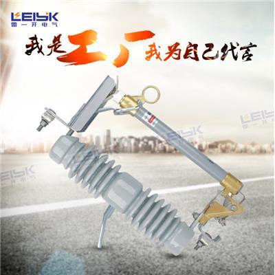 雷一 高压跌落式熔断器 HRW12-33/100A