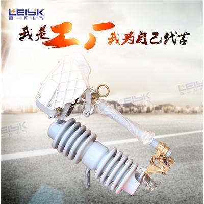 雷一 高压跌落式熔断器 保险 RW12-24/100A