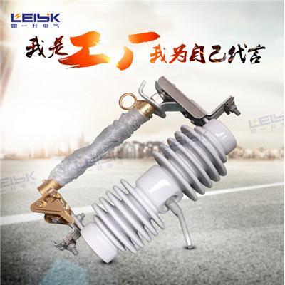 雷一 高压跌落式熔断器 保险 HRW12-11/200A