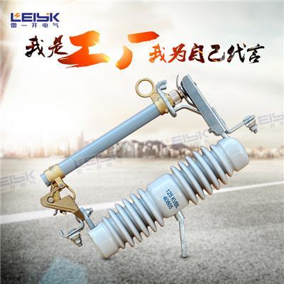雷一 高压跌落式熔断器 保险 RW10-10KV/100A
