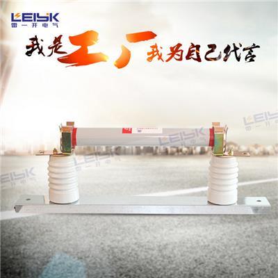 雷一 双管 高压熔断器 保险 RN3-10KV/40-60A