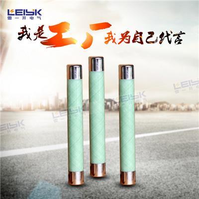 雷一 玻璃钎维熔断器 XRNP1-24KV/0.2A-50