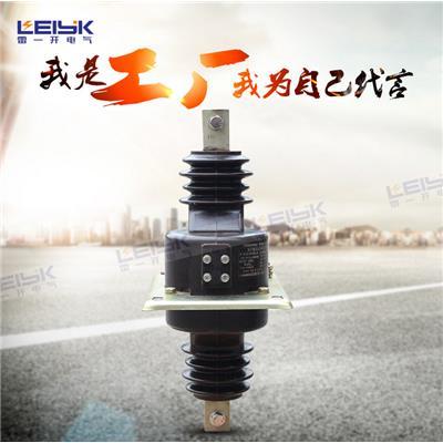 雷一 高压电流互感器 LAJ-10Q