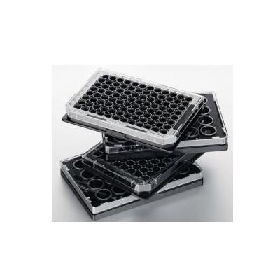 艾本德 生物仪器培养板Eppendorf Cell Imaging Plates货号 0030741005