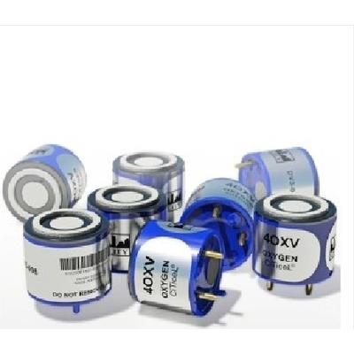 加拿大BW 四合一气体检测仪MC2-4 仪器维修 校准 传感器更换