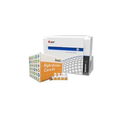 贝克曼库尔特 HPV E6/E7 mRNA 试剂