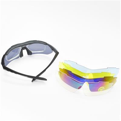 德国哈迈HMAI     NF6001多片式护目镜(可佩带近视片)