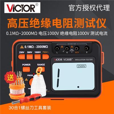 胜利仪器 绝缘电阻测试仪VC60B+/VICTOR60b